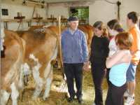 Tiere auf dem Bauernhof - Urlaub auf dem Bauernhof in Hof