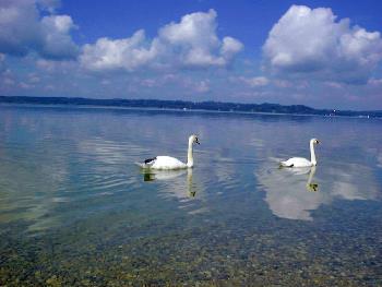 Starnberger See bei München
