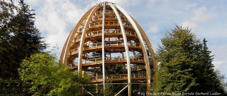 Baumkronenpfad im Bayerischen Wald - Reiseführer Bayern Sehenswürdigkeiten und Ausflugsziele