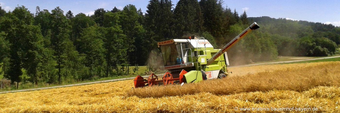 Bauernhof Ferienwohnungen Bayern